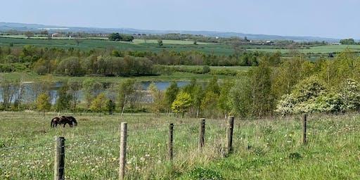 Wildlife In Durham Talk