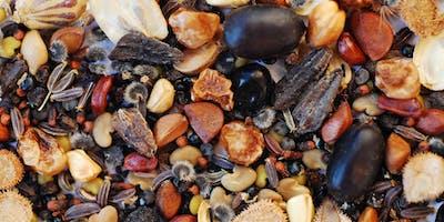 Dietro le quinte della conservazione - visita alla seed bank