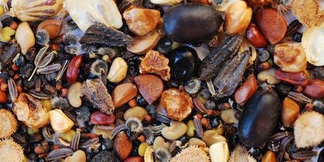 Dietro le quinte della conservazione - visita alla seed bank biglietti