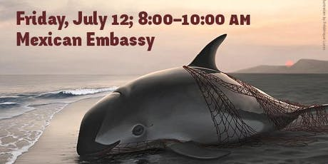 AWI's Annual Rally to Save the Vaquita tickets