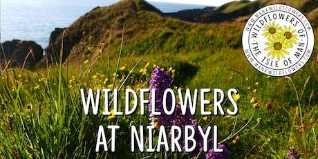 Wildflower Walk at Niarbyl tickets