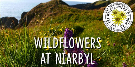 Wildflower Walk at Niarbyl