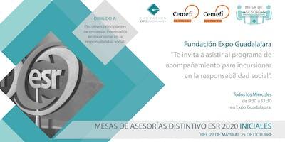 Mesas de Asesorías Iniciales Distintivo ESR 2020