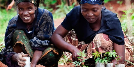 Building inclusive, healthy and resilient communities through agroforestry tickets