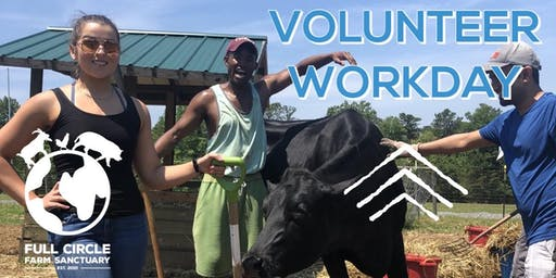 Sanctuary Volunteer Workdays