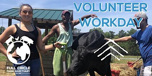 Sanctuary Volunteer Workdays
