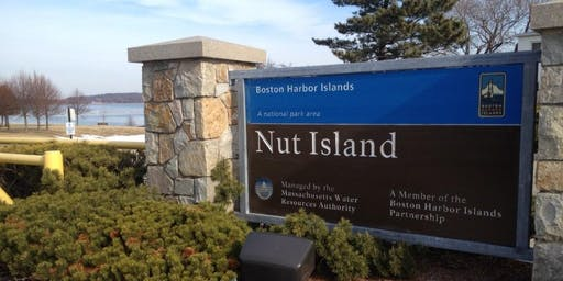 Yoga Pop-up at Nut Island