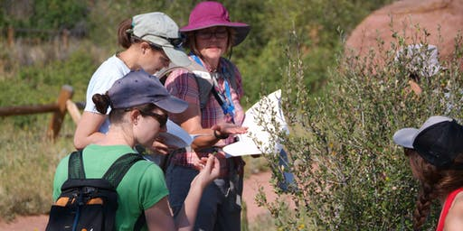 NPM Course on Wetland/Riparian Plants - Wednesdays, 7/24, 7/31, 8/14; 8:30 AM - 12:30 PM