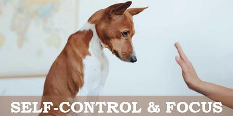 Self-Control & Focus tickets