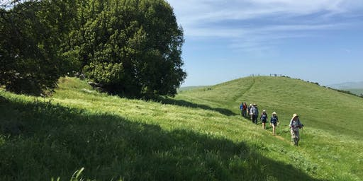Solano County: Hiking Hiddenbrooke Open Space