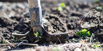 Organic Garden Talk