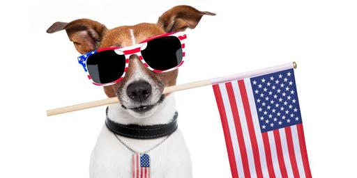 Patriotic Paw Walk at the Tampa Red White and Blue Fest