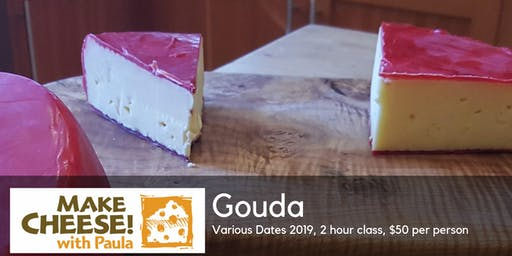 Make Your Own Gouda