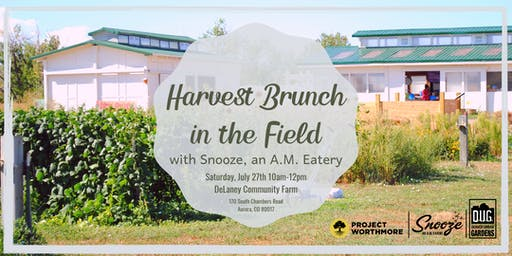 Harvest Brunch in the Field with Snooze, an A.M. Eatery