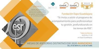 Mesas de Asesorías Avanzadas Distintivo ESR 2020