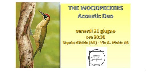 Serata blues rock a Terrazza Da Vinci con The Woodpeckers Duo