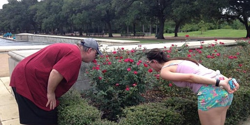 Amazing Let's Roam Houston Scavenger Hunt: Houston's Museum District!
