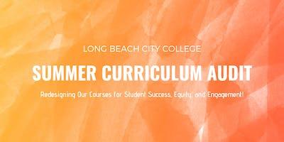 Summer Curriculum Audit