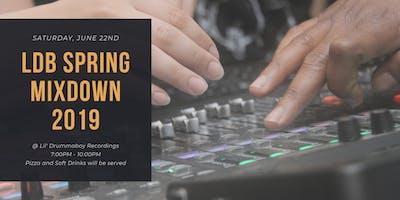 LDB Spring Mixdown 2019 & Student Gathering