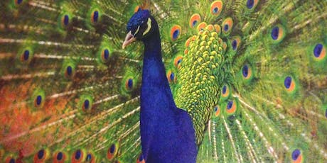 SUNSET SIP & PAINT A PEACOCK~ 15% OFF CENTRAL PARK B.Y.O.B.- Thursday Eve. July 25 tickets