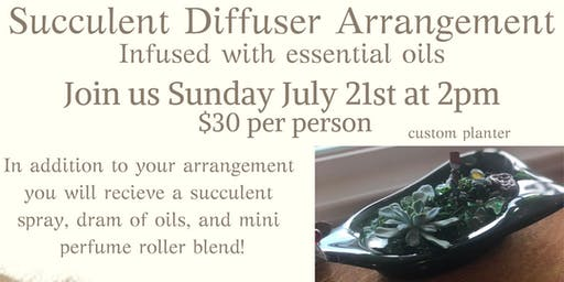 Succulent Diffuser Arrangement