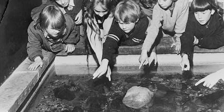 Anniversary Aquarium (Ages 4-8) tickets