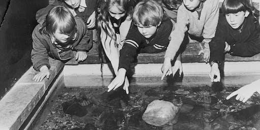 Anniversary Aquarium (Ages 4-8)