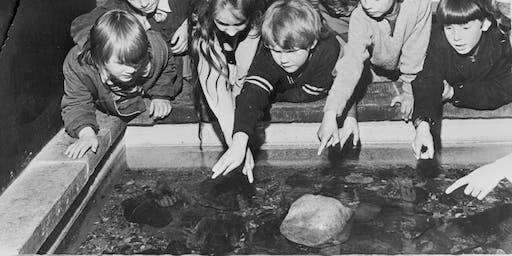 Anniversary Aquarium (Ages 9-12)