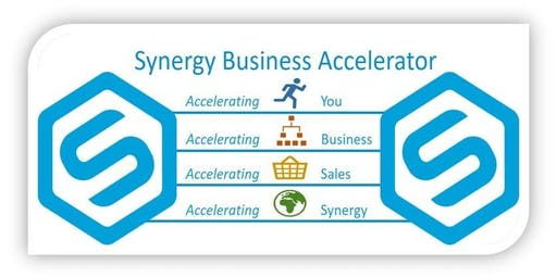 Synergy Business Accelerator Academy training day - includes a networking lunch.