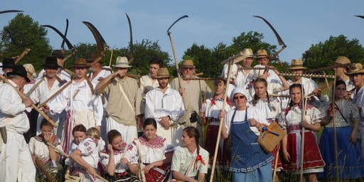 Scything Demonstration Day