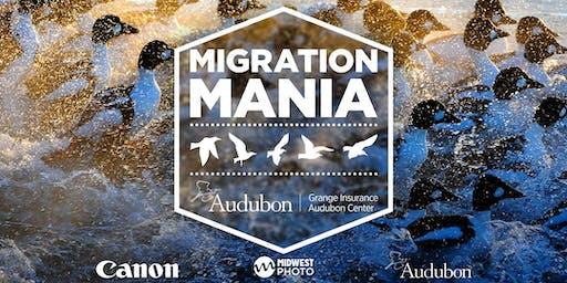 Migration Mania!