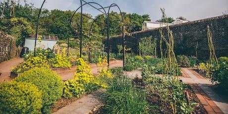 Planting Design: Next Steps Course / Cwrs Dylunwaith Plannu: Camau Nesaf  tickets