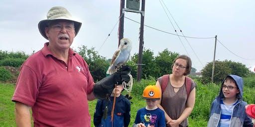 Wild Wednesday at Says Court Farm - Owls