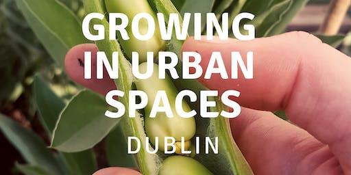 Growing in Urban Spaces - Dublin
