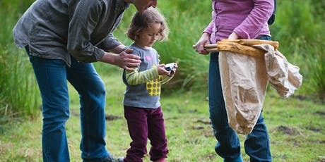 Wild in the Woods (Northampton): Wild Bug Hunting tickets