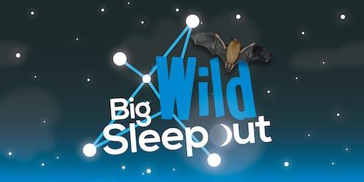 Big Wild Sleepout at Fairburn Ings