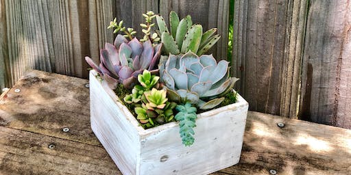 Whitewashed wooden succulent planter boxes