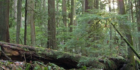Puget Sound Forest Owners Field Day - 2019 tickets