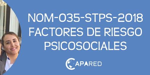 NOM-035-STPS-2018 Factores de Riesgo Psicosociales