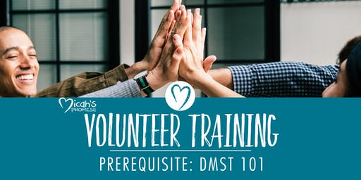 Micah's Promise Volunteer Training - August Midday