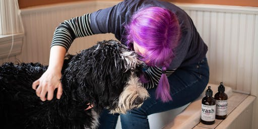 No More Tangles - Dog Parent {Happy Hour} & Grooming Tips 101