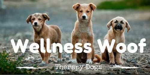 Wellness Woof- February Edition