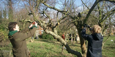 Pruning for beginners tickets