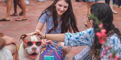 Dog Adoption on Broadway Island tickets