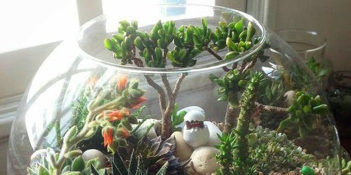 Wine Down Wednesday - Make a Terrarium