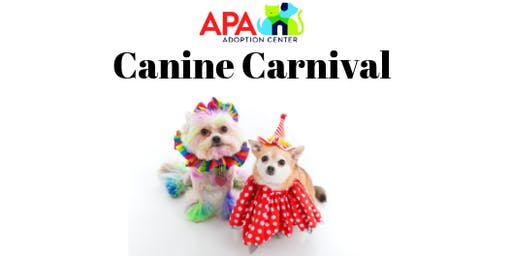 2019 Canine Carnival