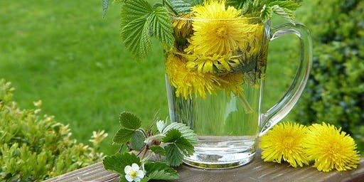 NLHG of Bonner; Member Appreciation Workshop: Tinctures, Teas, & Remedies