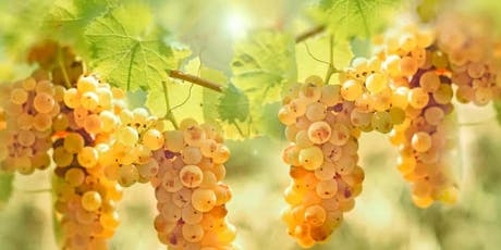 Summer of Riesling tickets