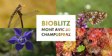 BioBlitz Mont Avic 30 anni biglietti
