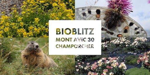 BioBlitz Mont Avic 30 anni